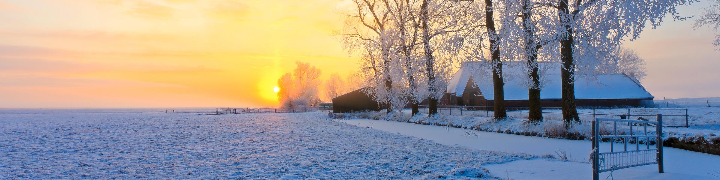 Winter_farm